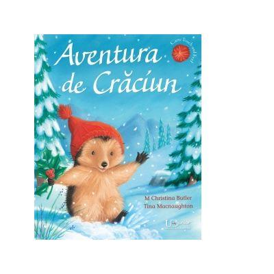 Aventura de Craciun - M Christina Butler