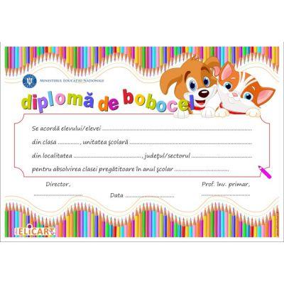 Diploma BOBOCEL