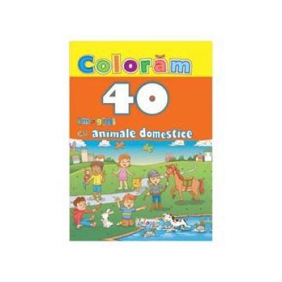 Coloram 40 imagini cu animale domestice
