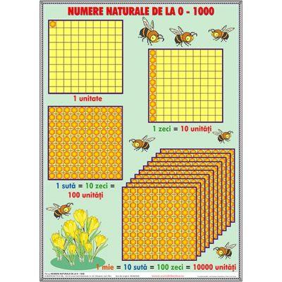 Numere naturale de la 0 -1000 - Plansa matematica