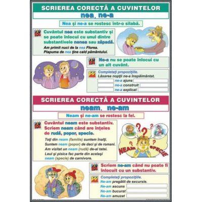 Ortografierea grupurilor: ne-a / nea si ne-am / neam \ Scrierea cuvintelor cu consoane duble: cc si nn (DUO) - Plansa cu 2 teme distincte (CP13)