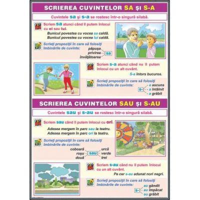 Ortografierea grupurilor: s-a / sa si s-au /sau \ Scrierea cuvintelor cu mp si mb (DUO) - Plansa cu 2 teme distincte (CP11)
