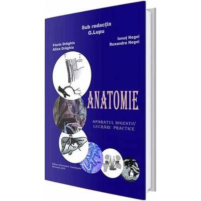 Anatomie. Aparatul digestiv, lucrari practice - G. Lupu