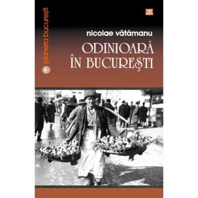 Odinioara in Bucuresti - Nicolae Vatamanu