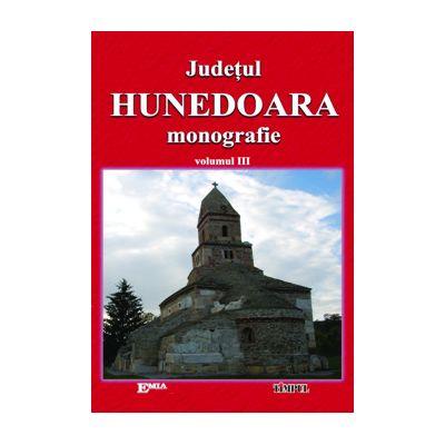 Judetul Hunedoara, monografie. Volumul III Cultura si spiritualitate - Ioan Sebastian Bara