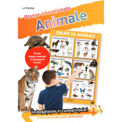 Animale. Planse educationale