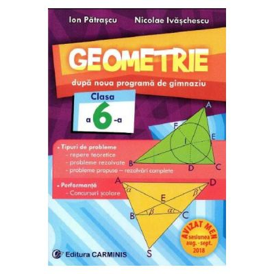 Geometrie. Dupa noua programa de gimnaziu. Clasa a VI-a - Ion Patrascu