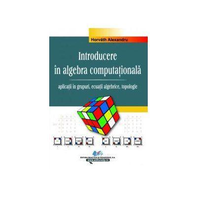 Introducere in algebra computationala – Vol. II – aplicatii in grupuri, ecuatii algebrice, topologie - Alexandru Horvath