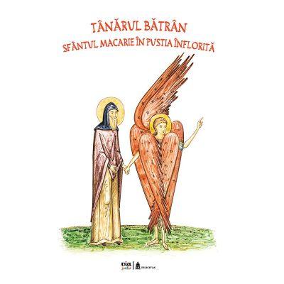 Tanarul batran. Sfantul Macarie in pustia inflorita - Petru Vornic