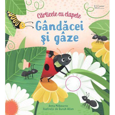 Gandacei si gaze - clapete (Usborne) - Usborne Books