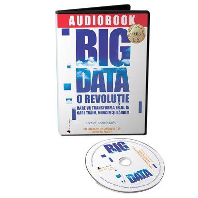 Audiobook. Big Data - Viktor Mayer-Schonberger