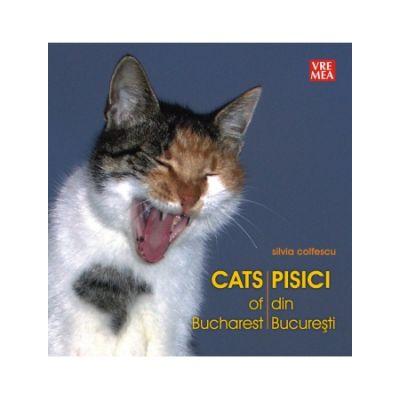 Pisici din Bucuresti - Silvia Colfescu
