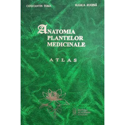 Anatomia plantelor medicinale. Atlas - Prof. dr. Constantin Toma, Dr. Rodica Rugina