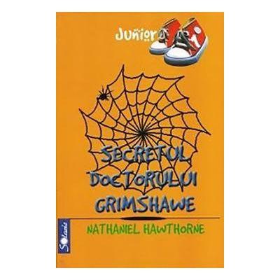 Secretul doctorului Grimshawe - Nathaniel Hawthorne