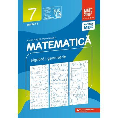 Matematica. Algebra, geometrie. Clasa a VII-a. 2022 Consolidare. Partea I - Anton Negrila, Maria Negrila
