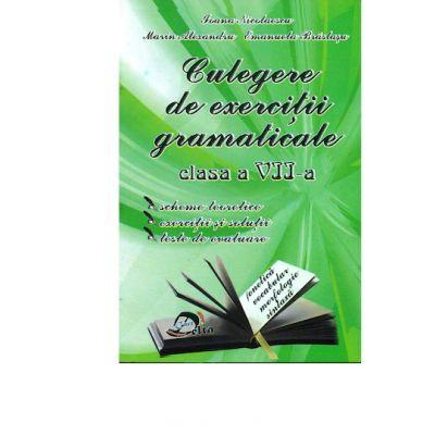 Culegere de exercitii gramaticale - clasa a VII-a - Ioana Nicolaescu
